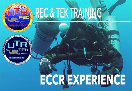 ECCR EXPERIENCE
